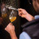 Moste im Weinkeller verkosten