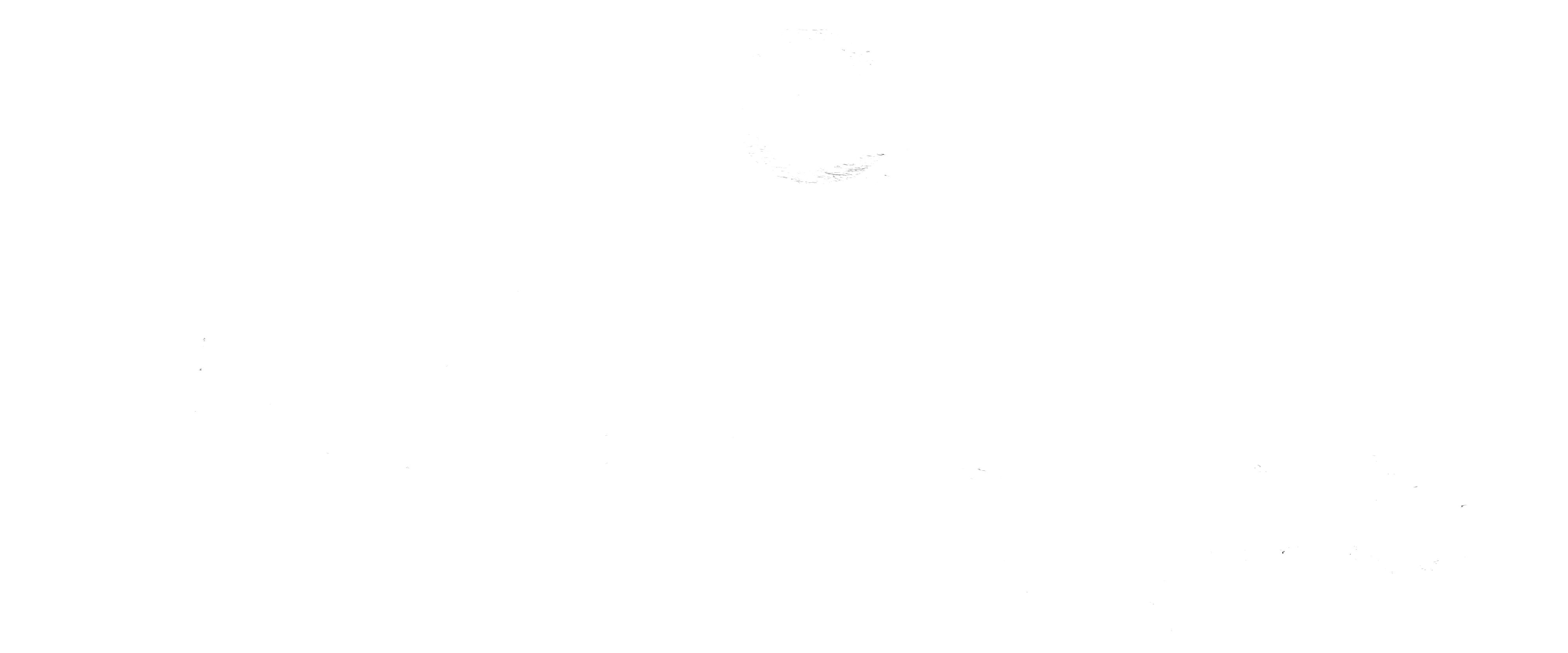 Logo-weiss-klein